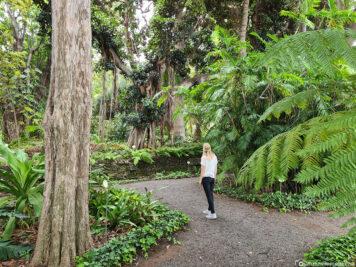 Der Botanische Garten in Puerto de la Cruz