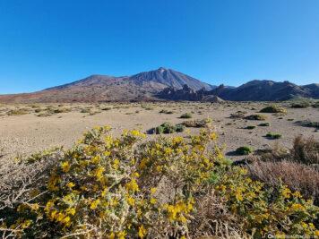 The volcano Teide