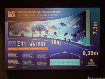 Facts about the large aquarium
